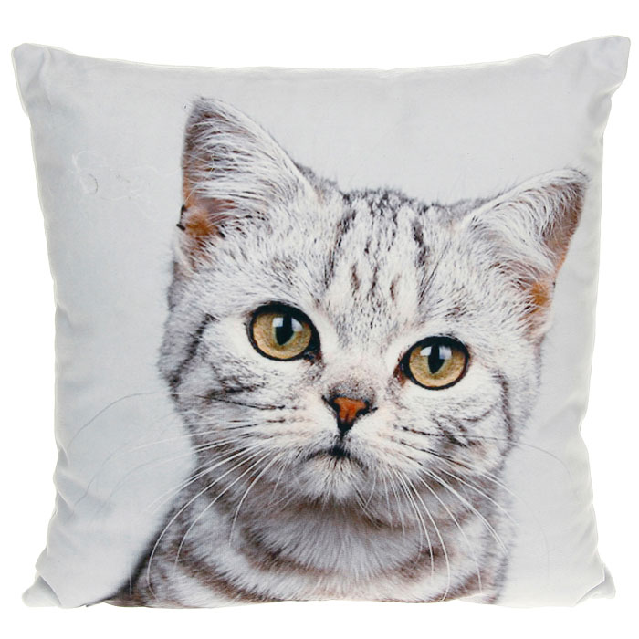 J.D.-cat-cushion