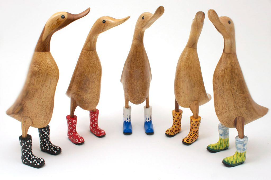 ducks in wellies